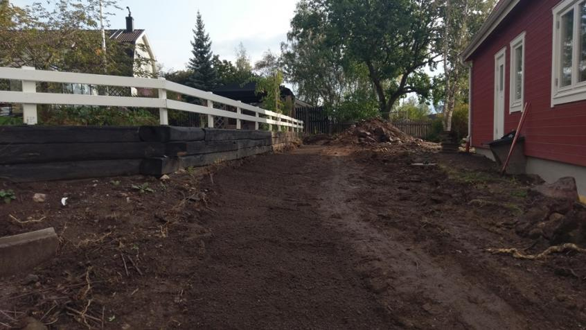 Plantering av avenbok - Planteringsdiket klart och fyllt med ny jord.