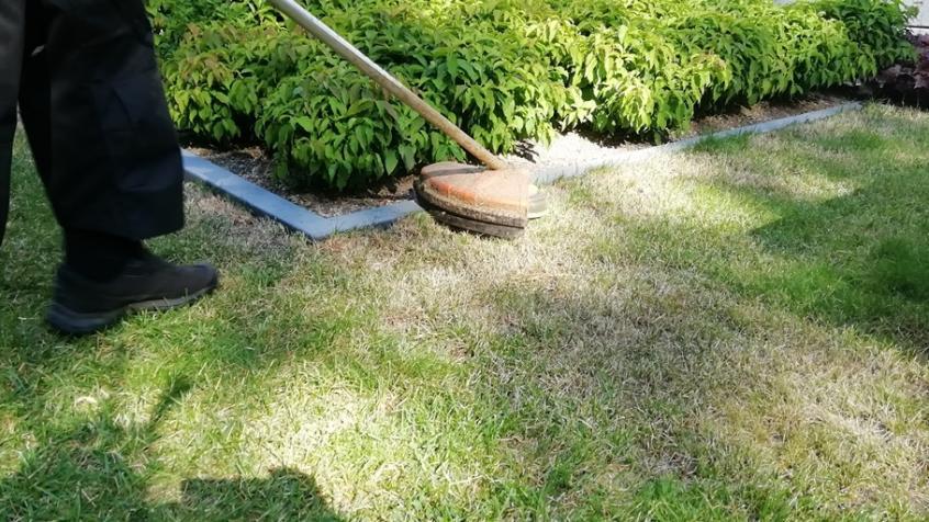 Vi trimmar givetvis och klipper gräset.