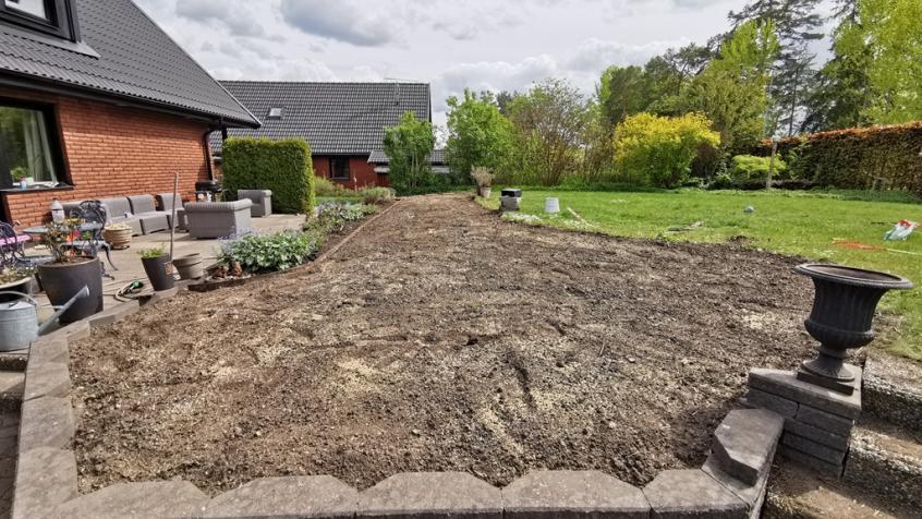 Vi har har grävt bort, jämnat till, spritt ut ny dressjord och stödsått.