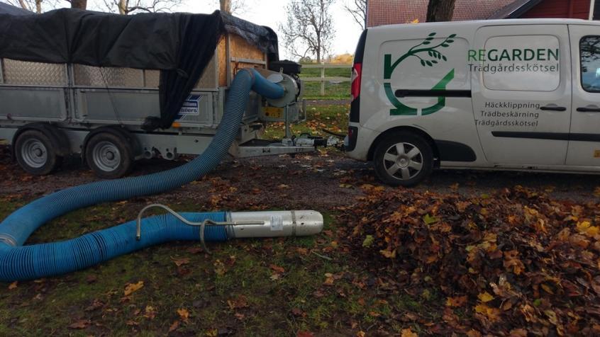 Kunden hade en vagn med lövsug så vi kunde ta upp och frakta bort löven.