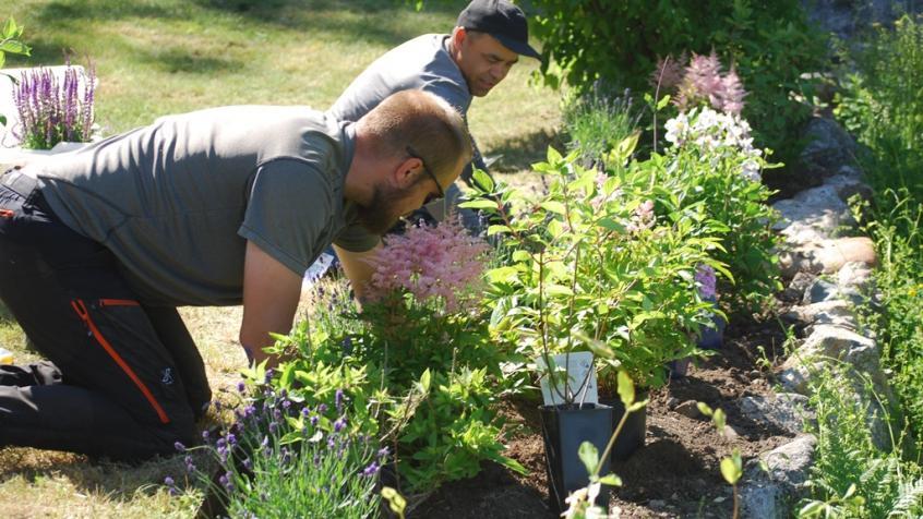 Joel och Saadoallah på knä i full färd med planteringen