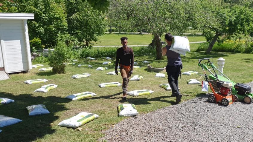 Våra mannar har burit en hel del säck den här sommaren.