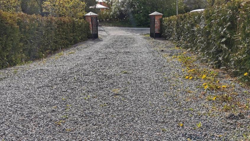 Före: Maskrosor längs sidorna av grusytan