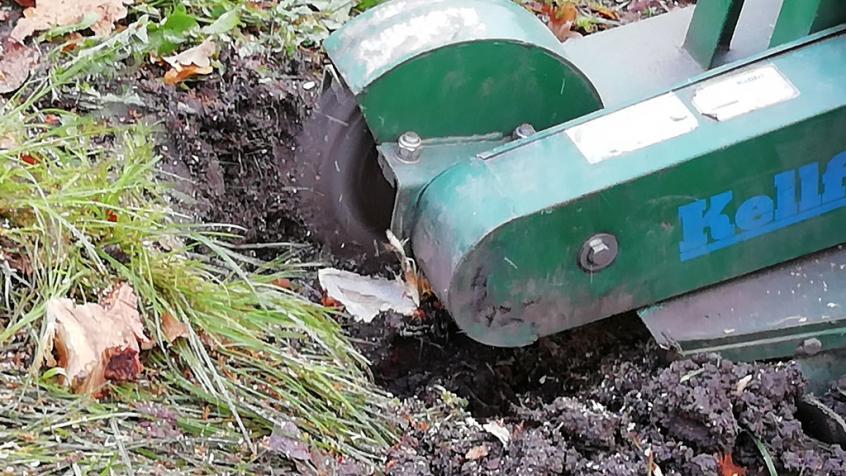 Vi fräser ner stubben ordentligt så att det går att så gräs eller plantera efteråt.