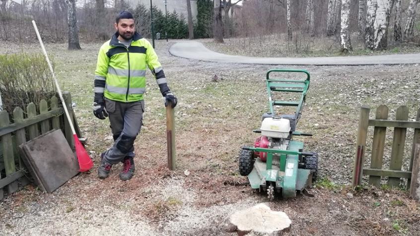 Redo för stubbfräsning