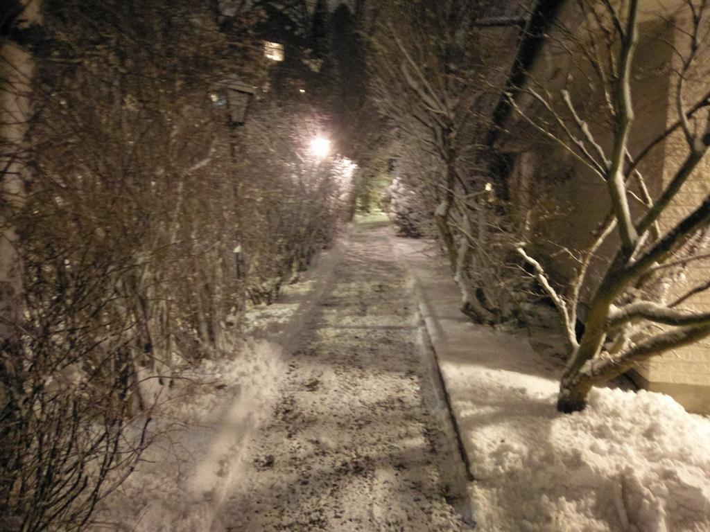 Gångväg fram till husets entré skottad och sandad.