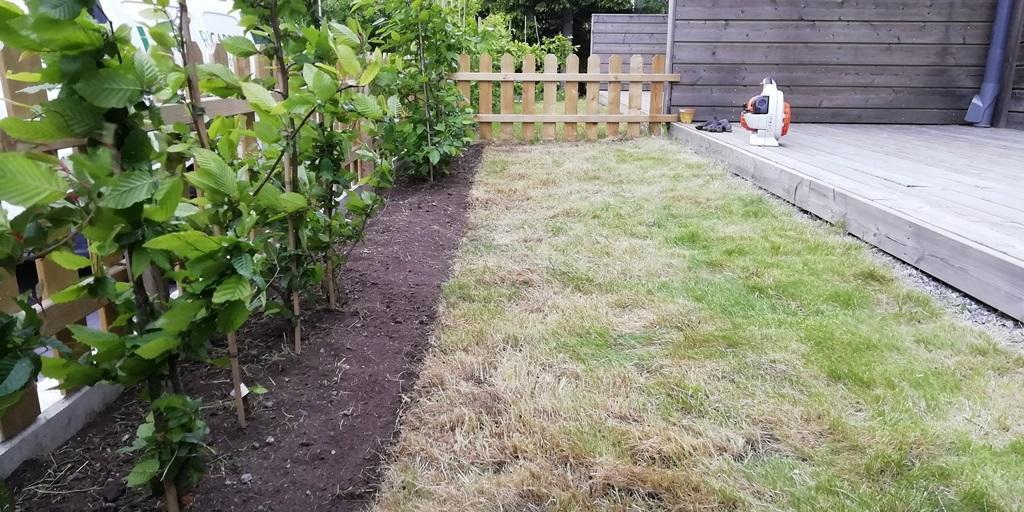 Vi rensar och skär en fin kantlinje på gräsmattan