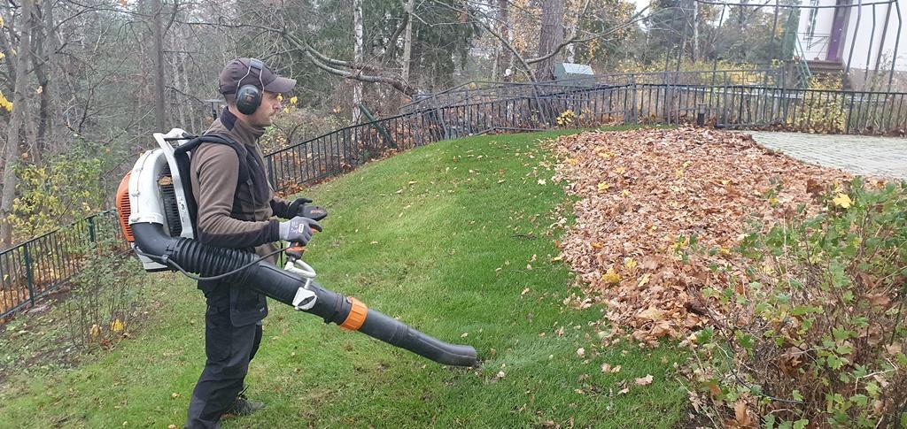 Vi blåser oftast ihop löven i strängar innan vi samlar ihop för bortforsling