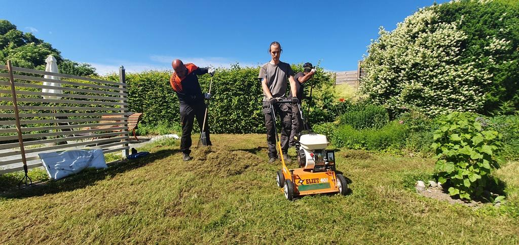 Vi var tre personer på plats den här dagen för att renovera gräsmattan
