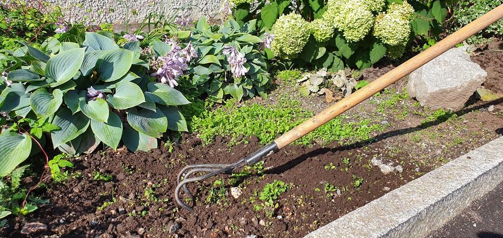 Vi luckrar jorden och rensar ogräs