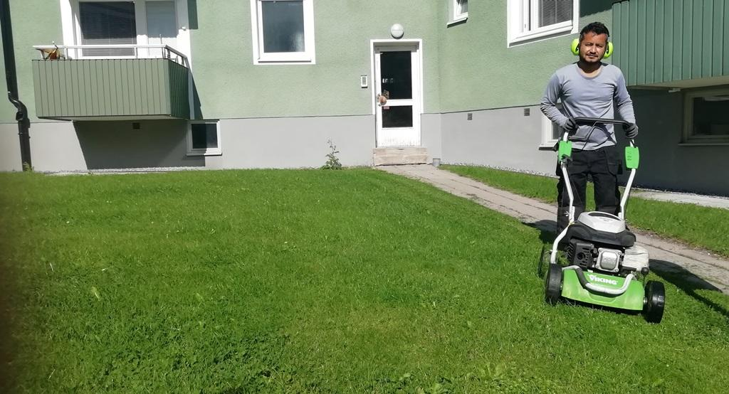 Vi klipper gräset varannan vecka under högsäsong
