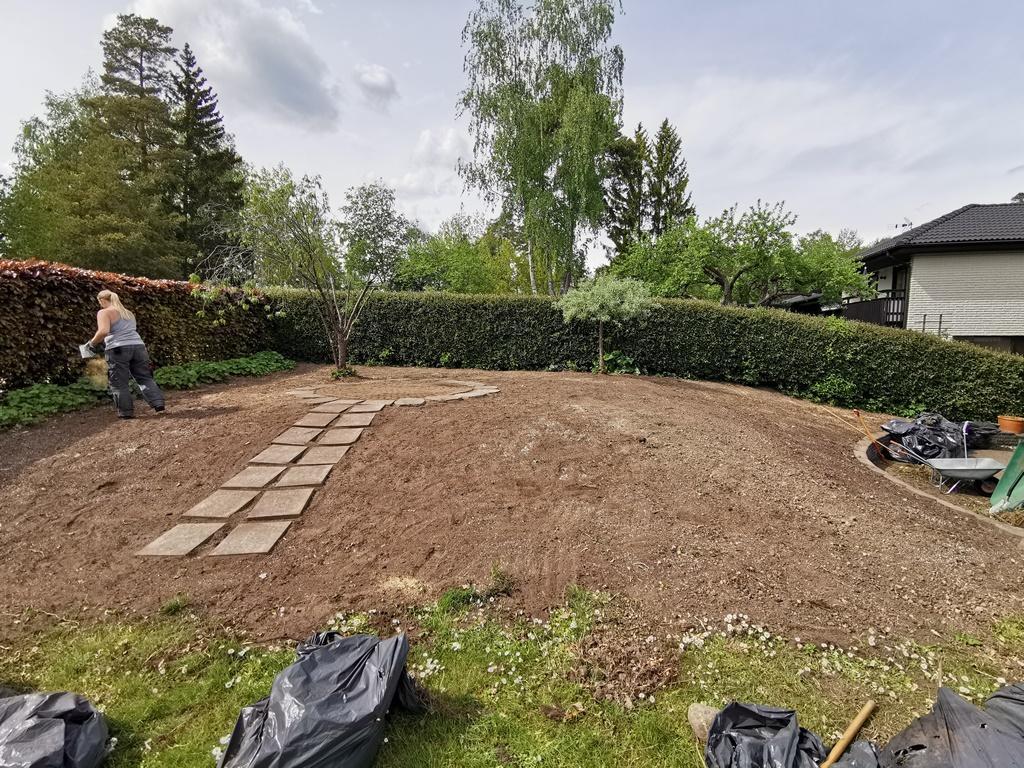 Efter arbetet när vi grävt bort, jämnat till och spritt ut dressjord. Camilla stödsår gräsfrö.