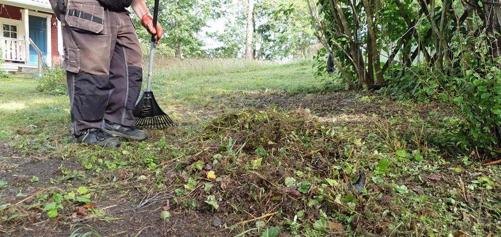Peter rensar ihop det slagna gräset.
