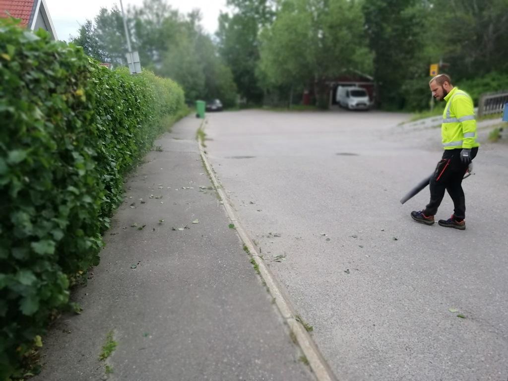 Vi avslutar så klart med att städa undan allt klipp och blåser alltid med våra lövblåsar så att det blir rent och fint.