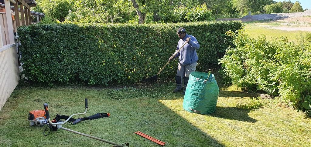 Efteråt rensar vi ogräs och städar upp.