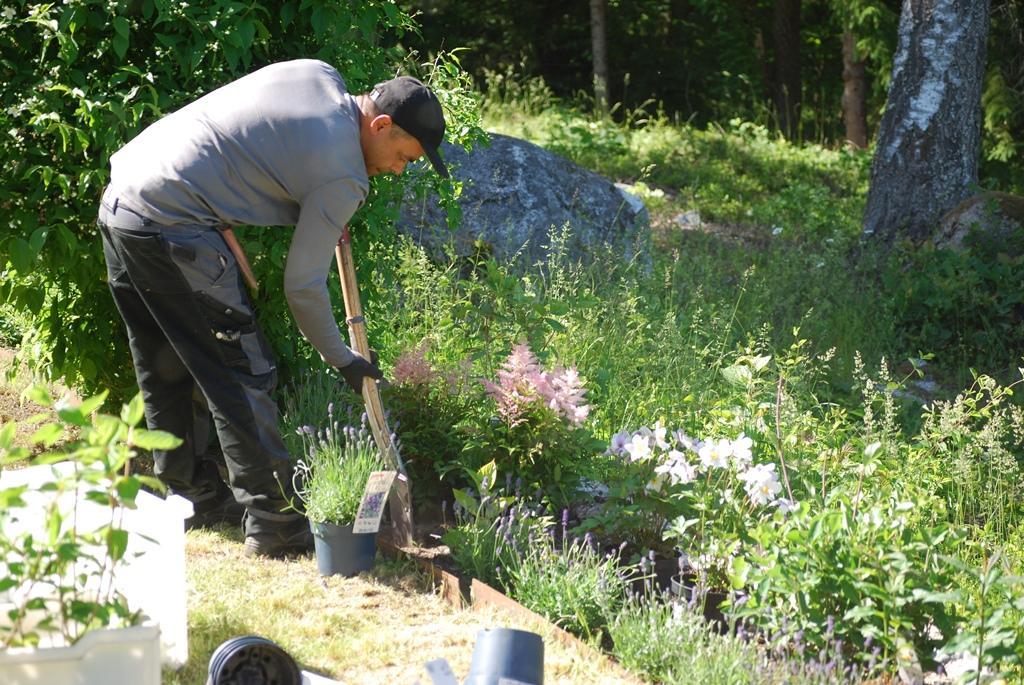 Vi fick maka lite på de växter som fanns för att få plats med de nya.