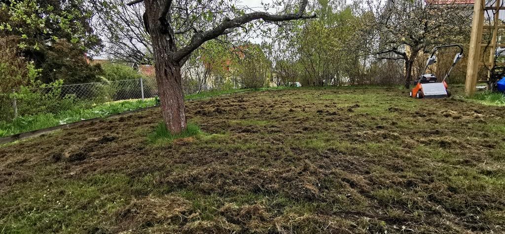 Det blir ofta väldigt mycket mossa och dött gräs som vi river upp som sedan behöver räfsas ihop