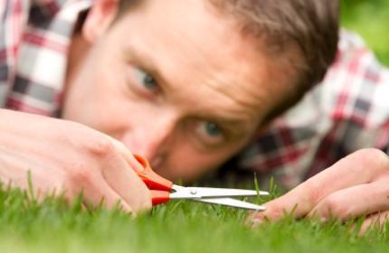 ReGardens trädgårdsarbetare klipper gräset, häcken, rensar ogräs och sköter om din tomt.