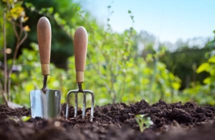 Plantera, spade och grep, odla och plantera