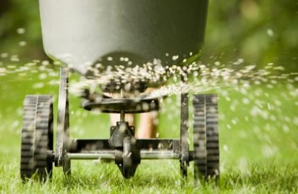 Göda gräsmattan, gräsmattegödning.