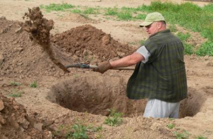 Plantera träd, Gräva grop, trädplantering